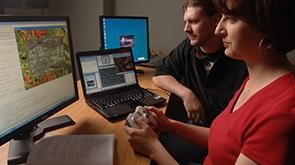IT-Web & Software Developer image
