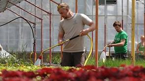 Landscape Horticulture Technician image