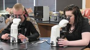 Animal Science Technician image