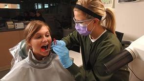 Dental Assistant image